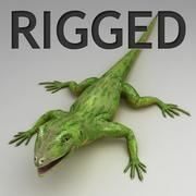 Green lizard rigged 3d model