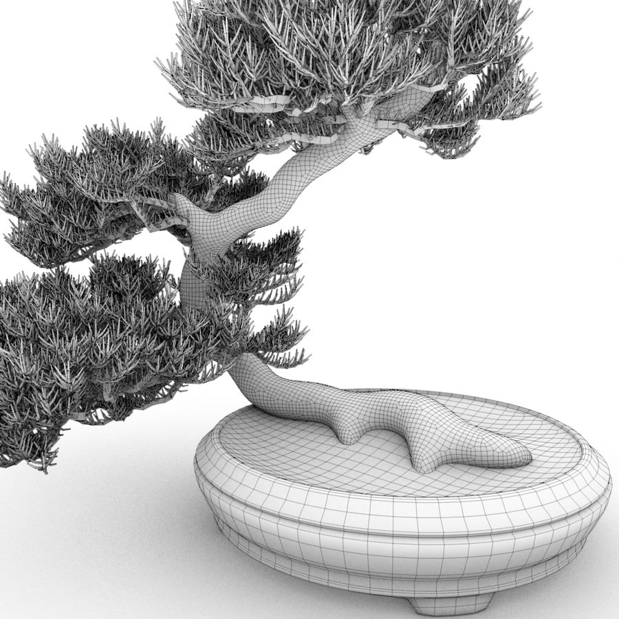 Bonsai royalty-free 3d model - Preview no. 3