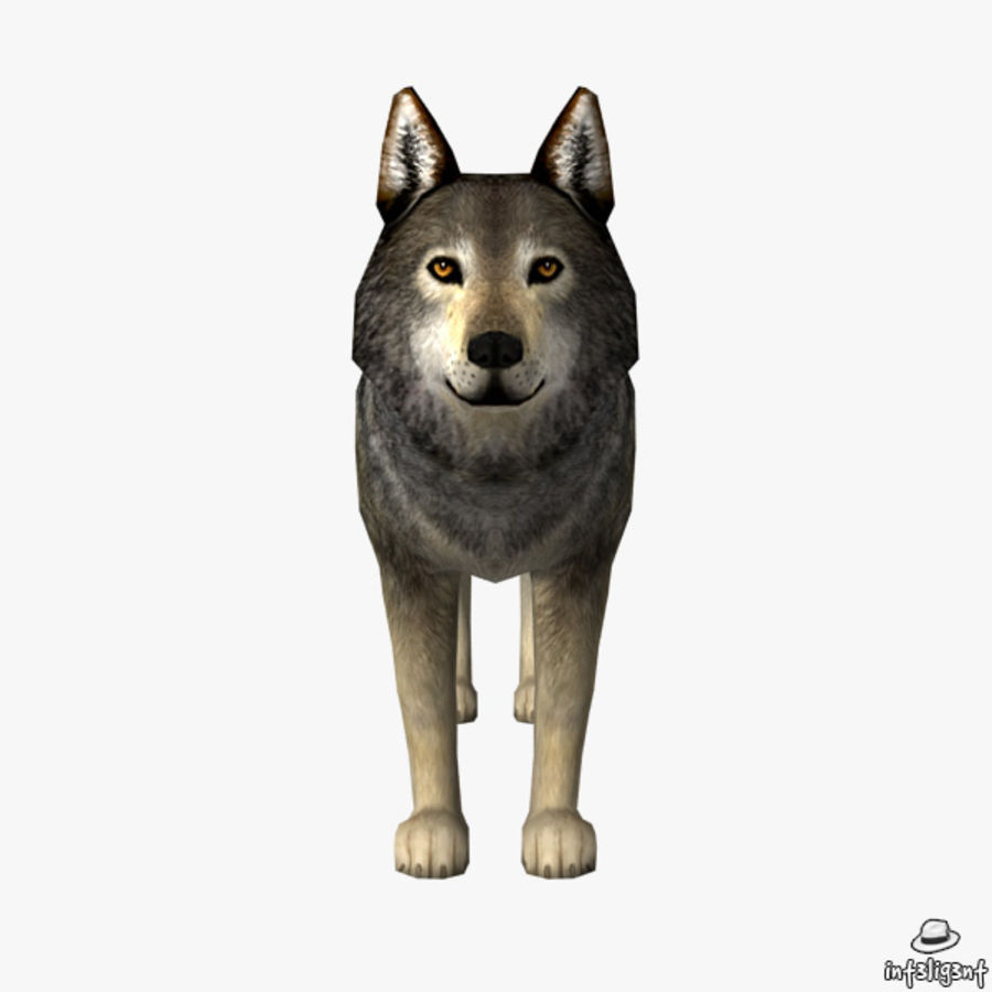 Wolf royalty-free 3d model - Preview no. 3
