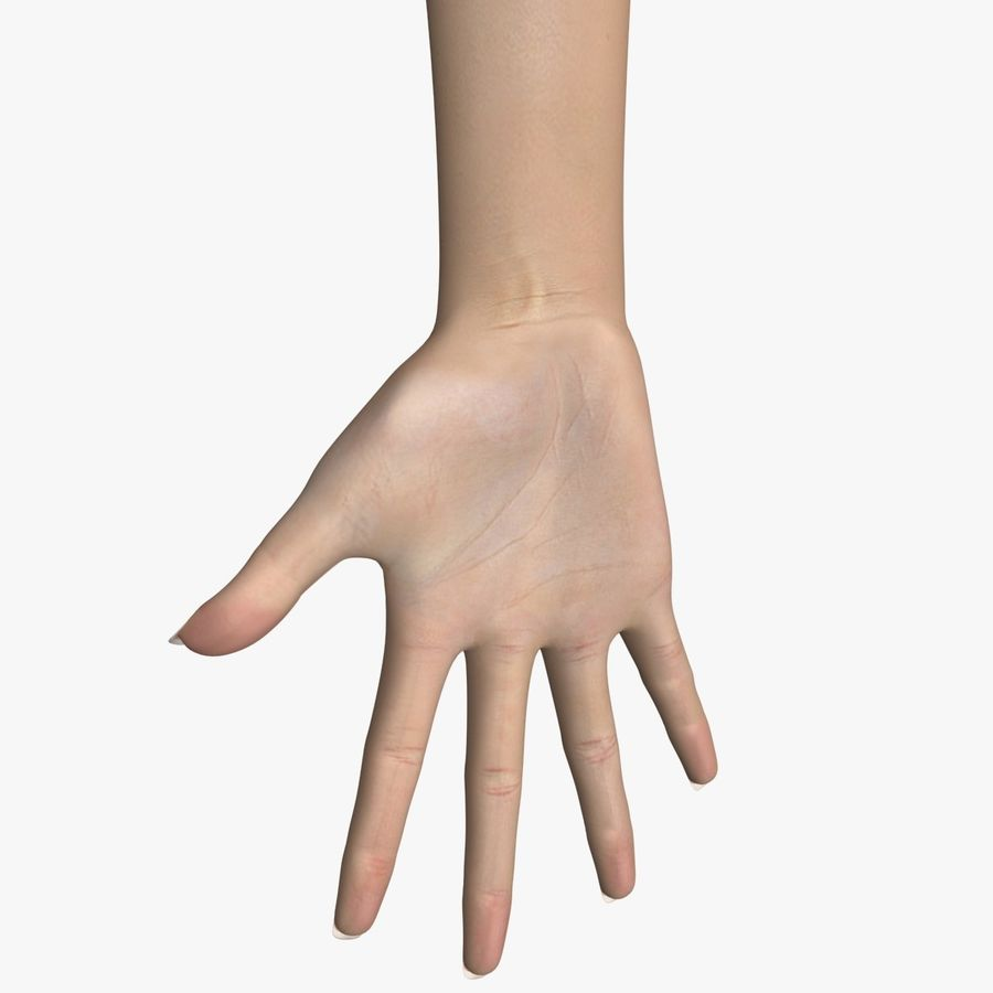 Hand Female royalty-free 3d model - Preview no. 1