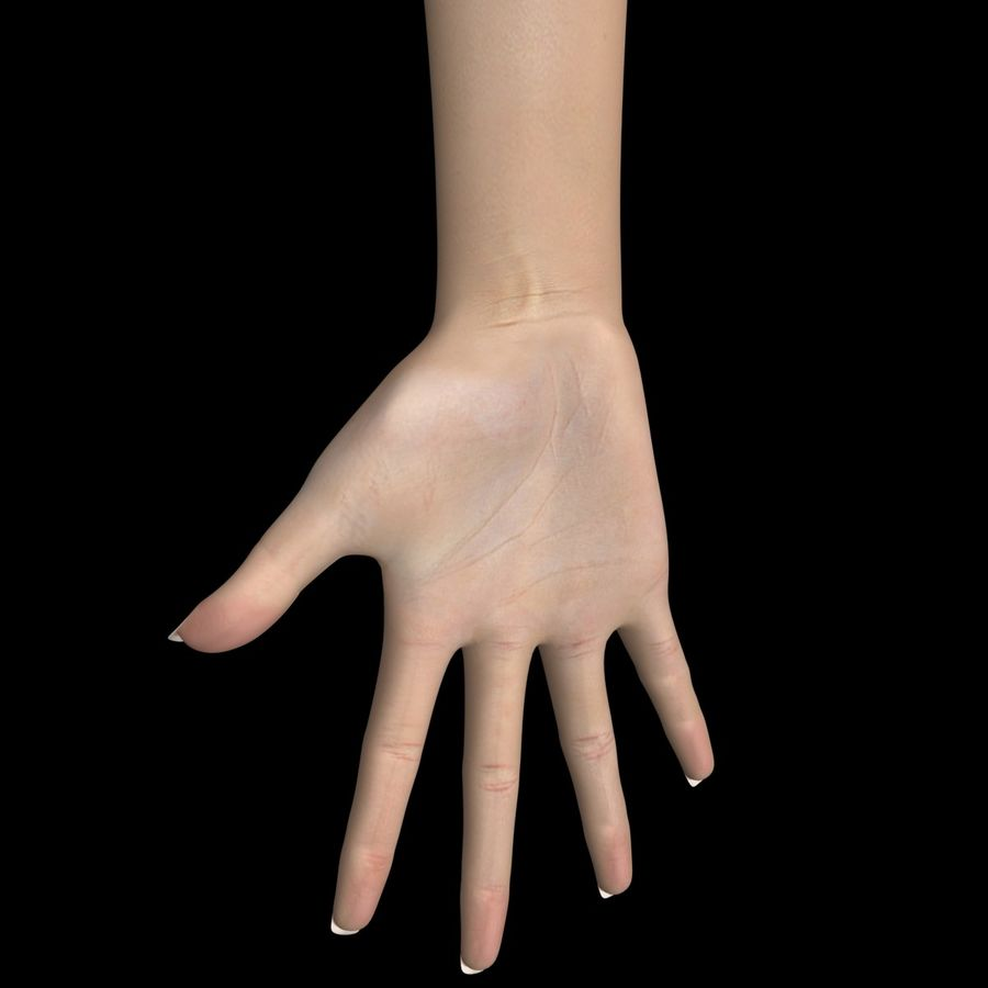 Hand Female royalty-free 3d model - Preview no. 2