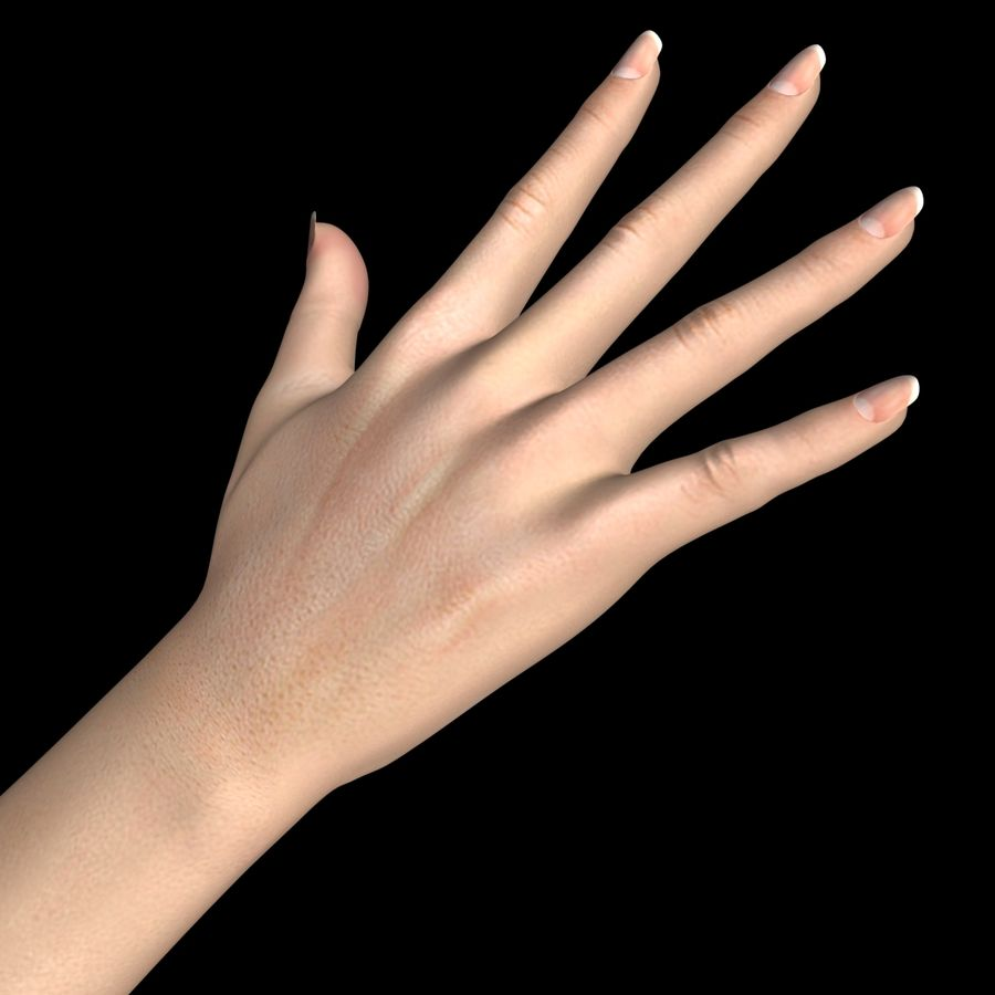Hand Female royalty-free 3d model - Preview no. 4