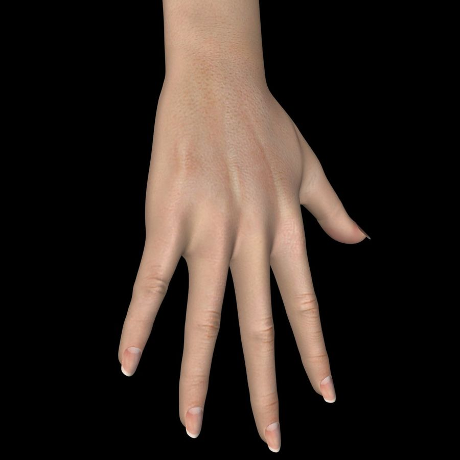 Hand Female royalty-free 3d model - Preview no. 3