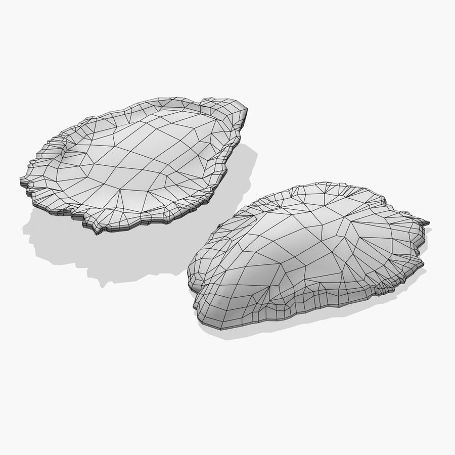 Oyster royalty-free 3d model - Preview no. 4