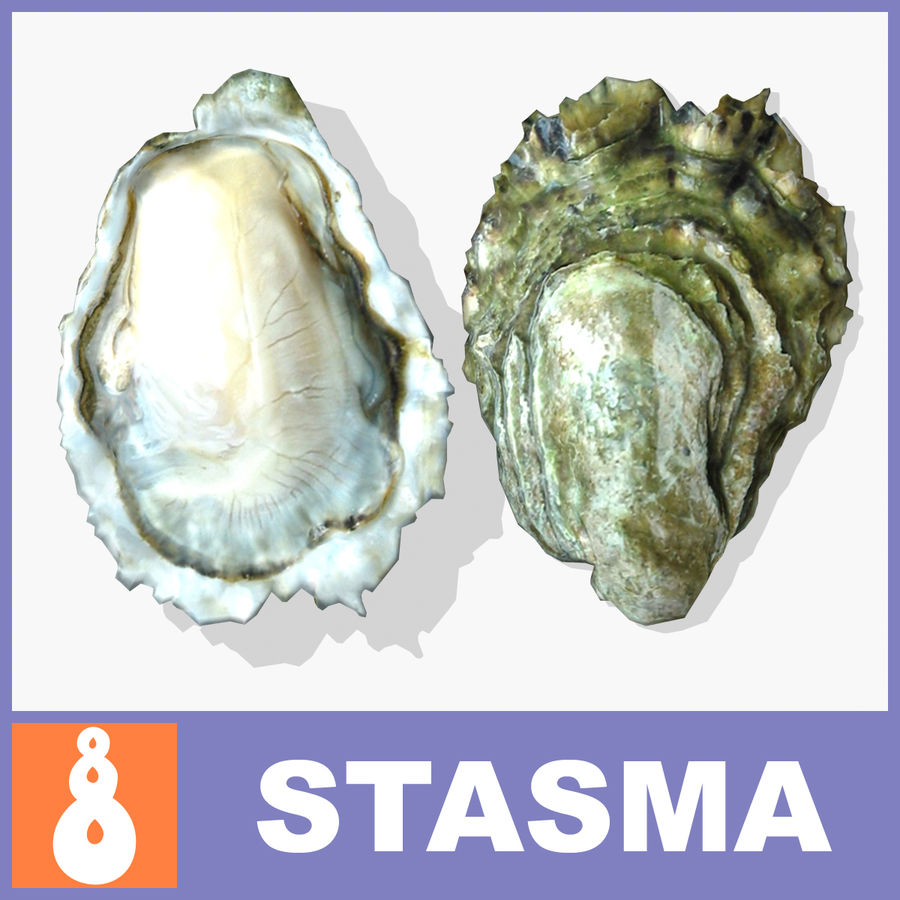 Oyster royalty-free 3d model - Preview no. 1