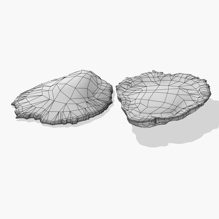 Oyster royalty-free 3d model - Preview no. 6