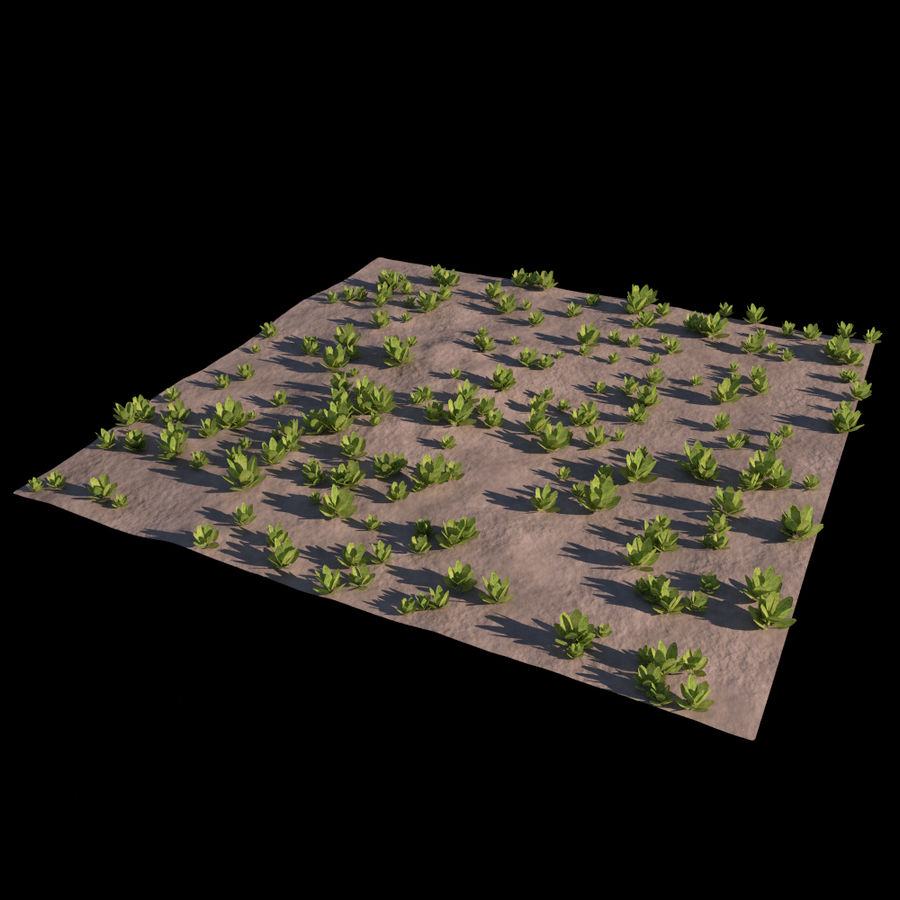 Front Yard (Terrain 2) royalty-free 3d model - Preview no. 7