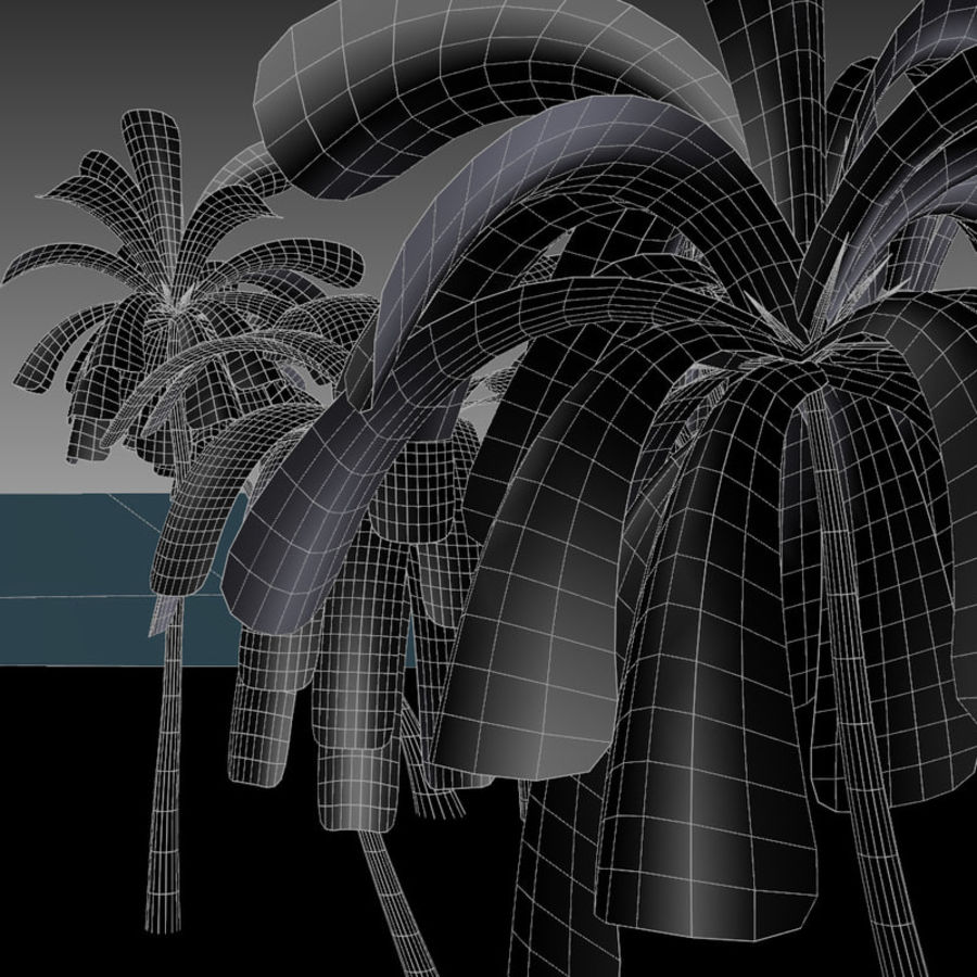 Palm Trees royalty-free 3d model - Preview no. 9