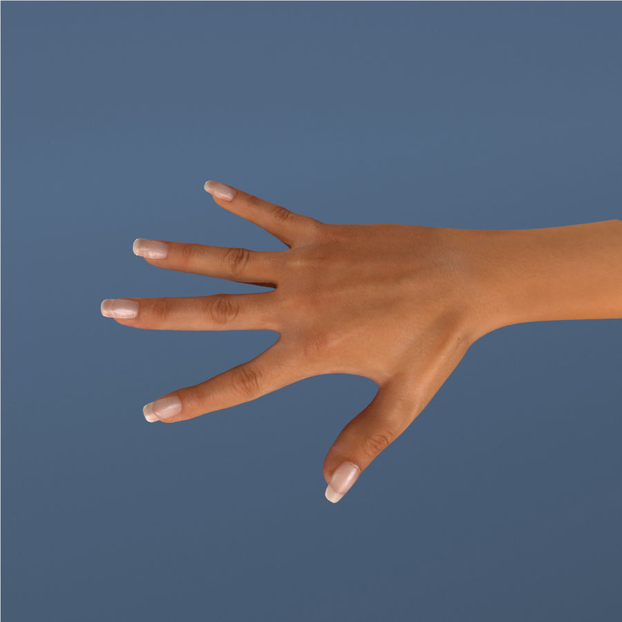 Hand royalty-free 3d model - Preview no. 2