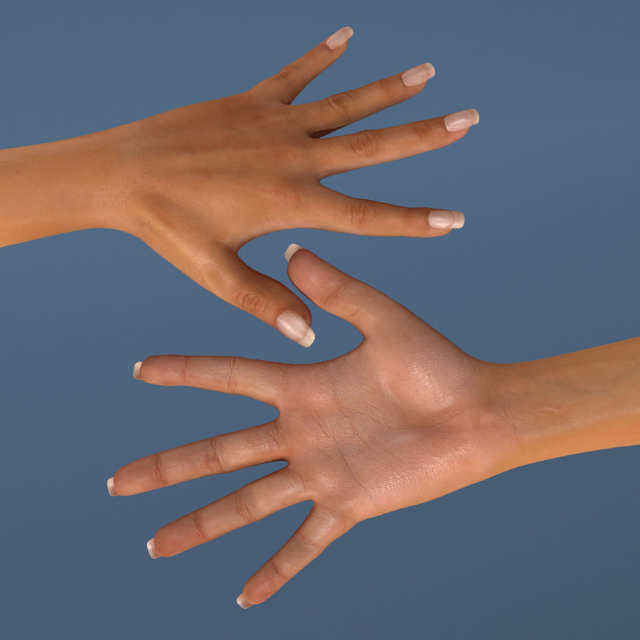 Hand royalty-free 3d model - Preview no. 4