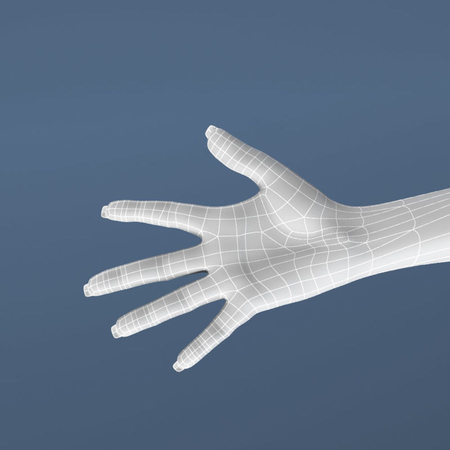 Hand royalty-free 3d model - Preview no. 8