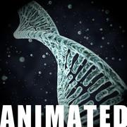 DNAへリックス 3d model