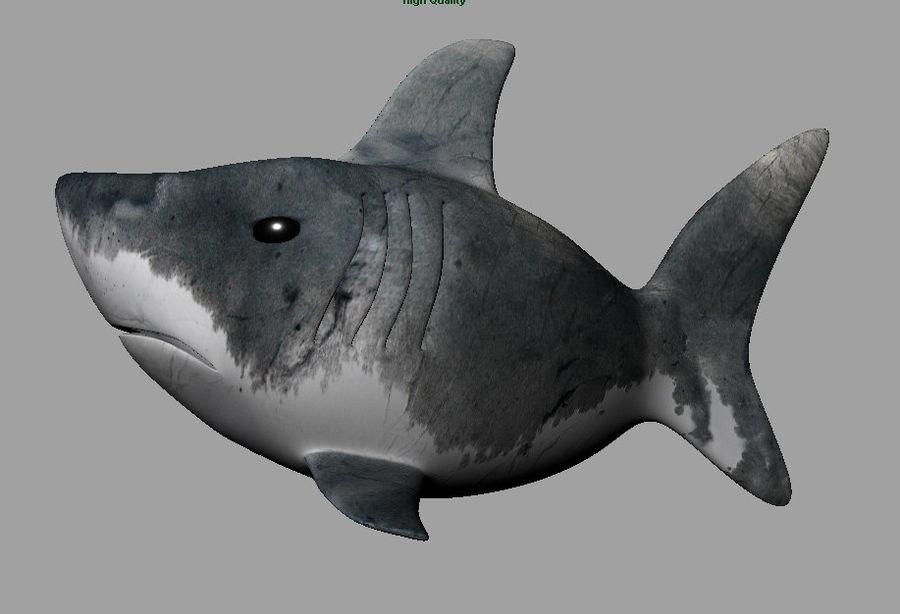 Cartoon Shark royalty-free 3d model - Preview no. 3