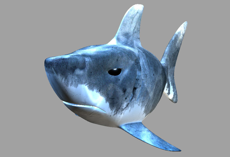 Cartoon Shark royalty-free 3d model - Preview no. 2