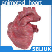 Animated Heart  - Realistic Model 3d model