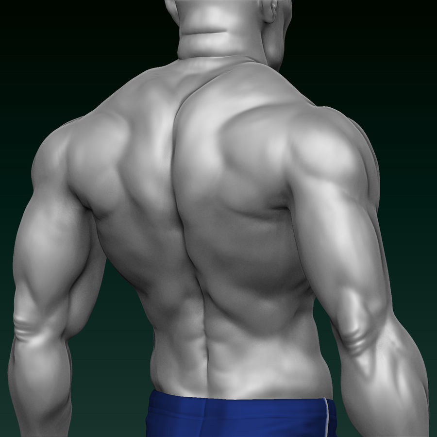 Athletic Man Zbrush Sculpt royalty-free 3d model - Preview no. 8