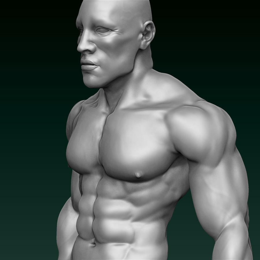 Athletic Man Zbrush Sculpt royalty-free 3d model - Preview no. 1