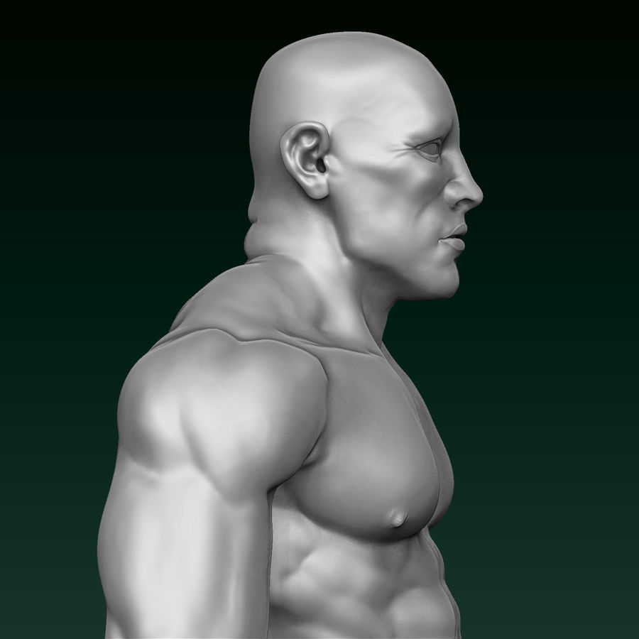 Athletic Man Zbrush Sculpt royalty-free 3d model - Preview no. 9
