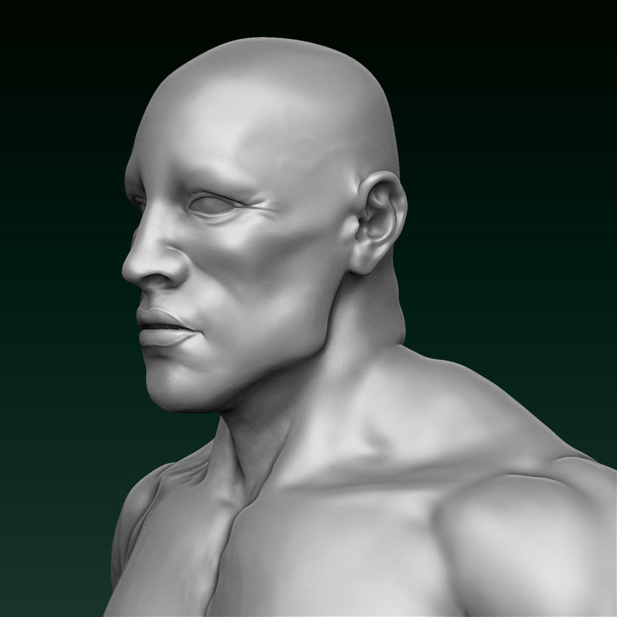 Athletic Man Zbrush Sculpt royalty-free 3d model - Preview no. 3