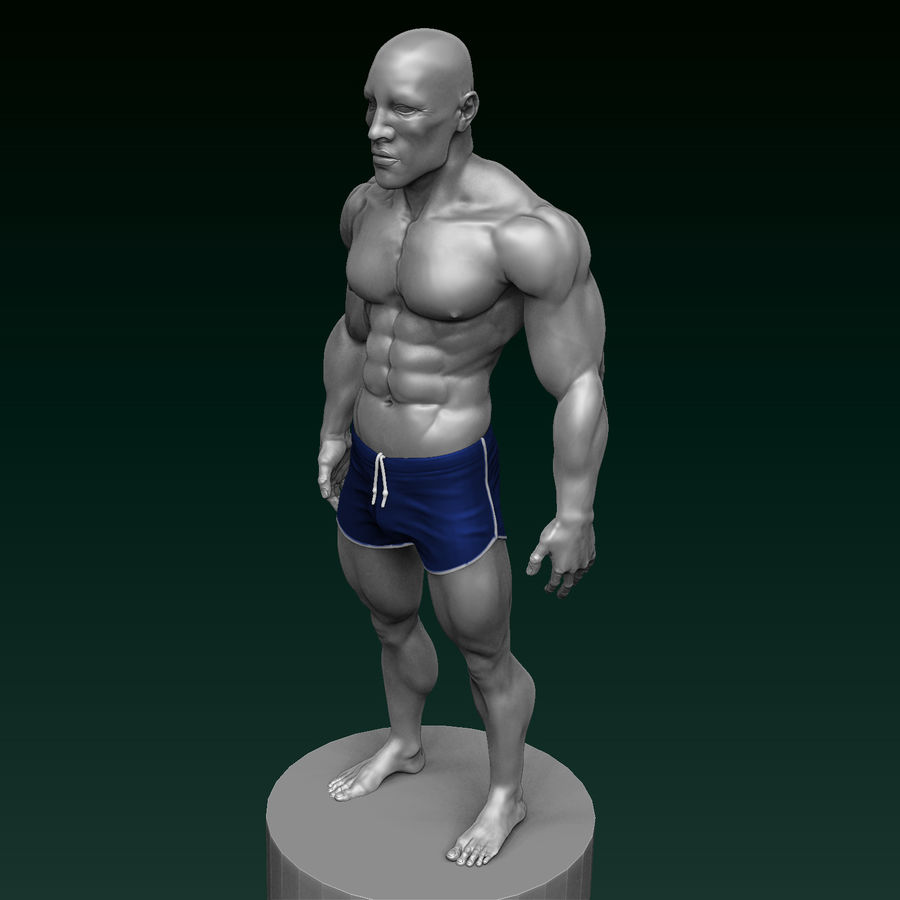 Athletic Man Zbrush Sculpt royalty-free 3d model - Preview no. 2