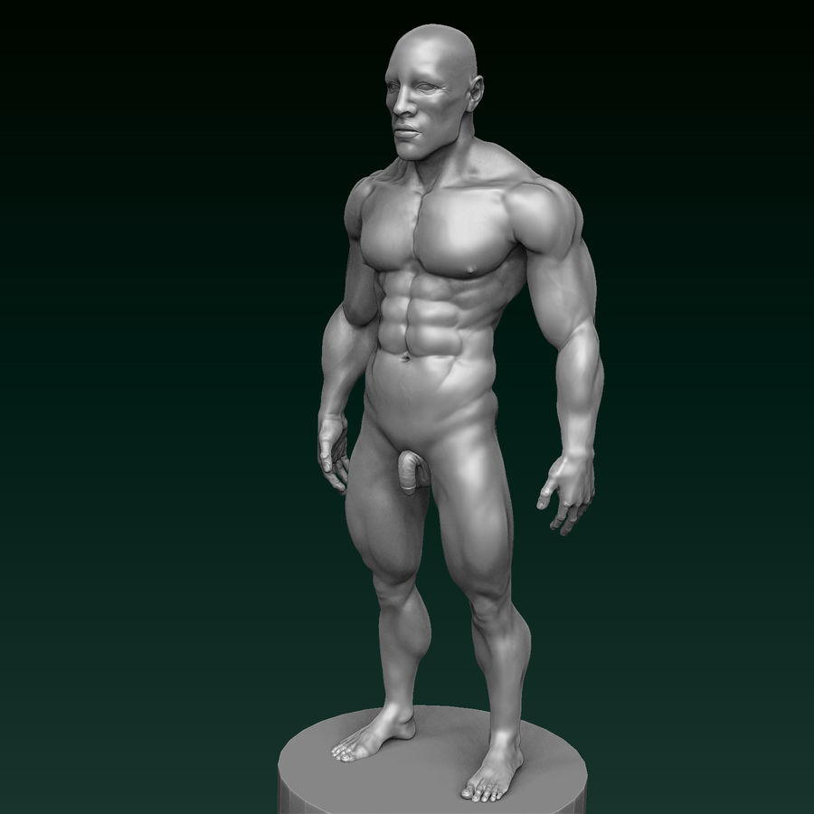 Athletic Man Zbrush Sculpt royalty-free 3d model - Preview no. 11