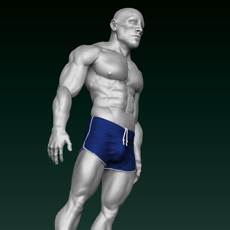 Athletic Man Zbrush Sculpt royalty-free 3d model - Preview no. 10