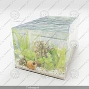aquarium 01 3d model