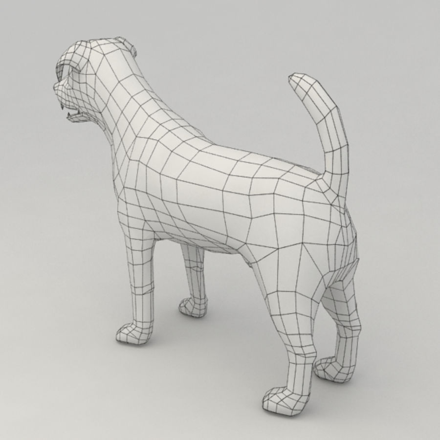 Jack Russell Terrier royalty-free 3d model - Preview no. 10