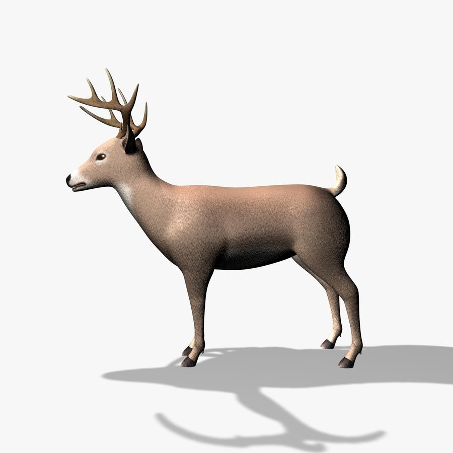 Hirsch royalty-free 3d model - Preview no. 1