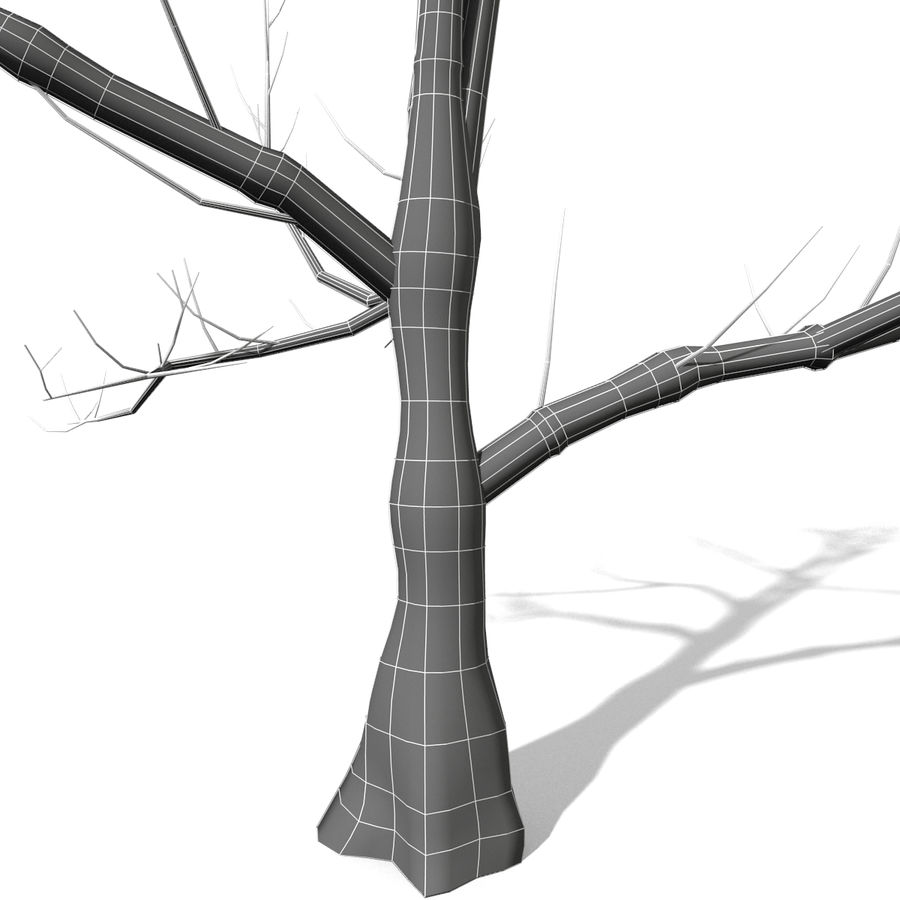 Arbre sans feuilles royalty-free 3d model - Preview no. 5