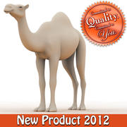 Camel Model 3d model