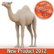 Modello di cammello 3d model