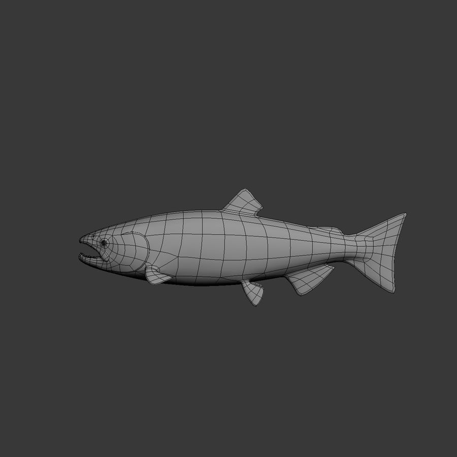 salmone royalty-free 3d model - Preview no. 7