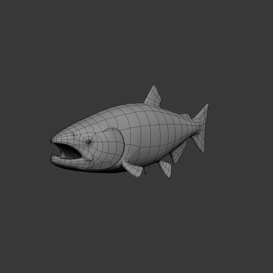salmone royalty-free 3d model - Preview no. 6