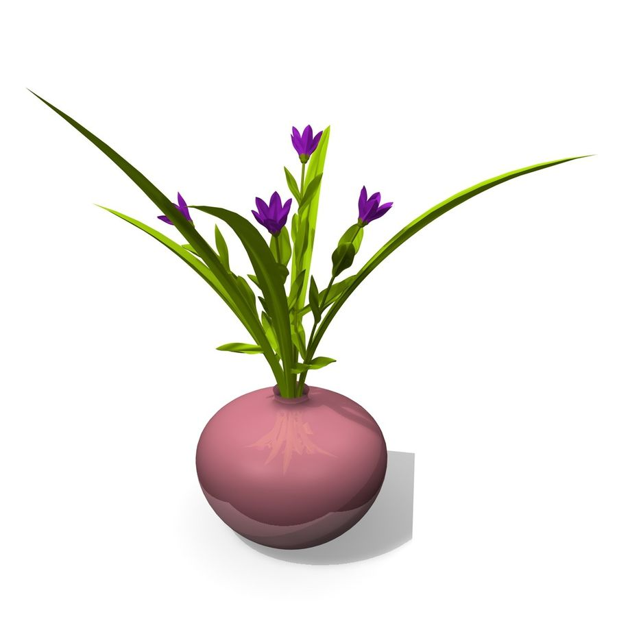 Indoor Plant 3 royalty-free 3d model - Preview no. 3