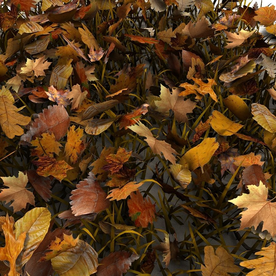 Autumn Grass With Dead Yellow Old Leaves royalty-free 3d model - Preview no. 9