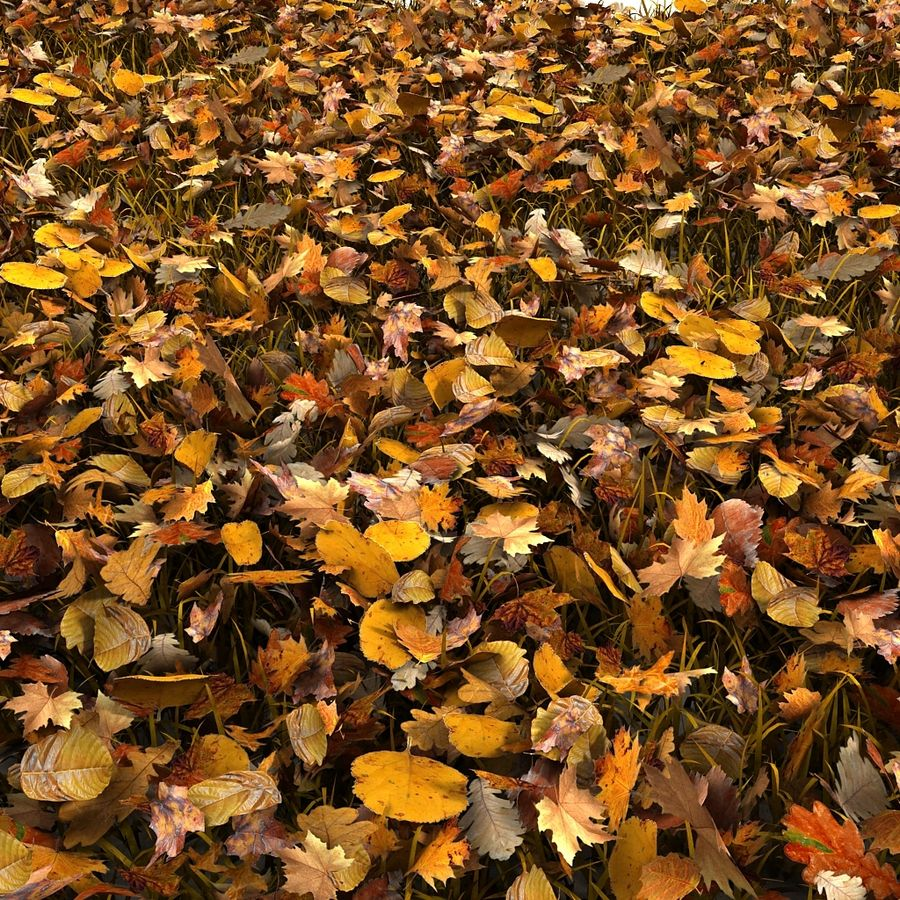 Autumn Grass With Dead Yellow Old Leaves royalty-free 3d model - Preview no. 15