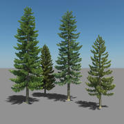 松树 3d model