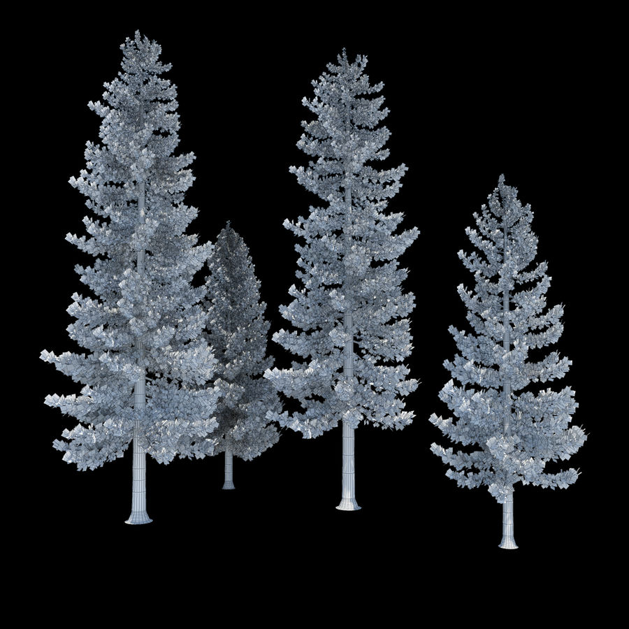 Pine Trees royalty-free 3d model - Preview no. 3