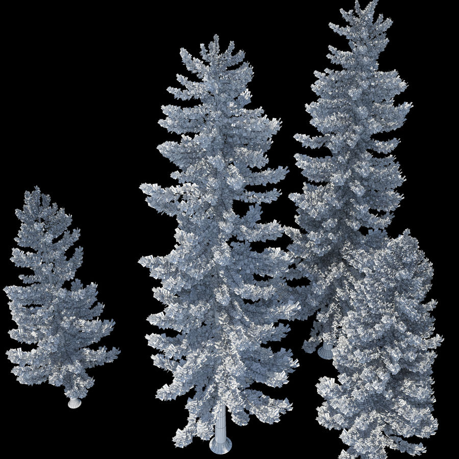 Pine Trees royalty-free 3d model - Preview no. 13
