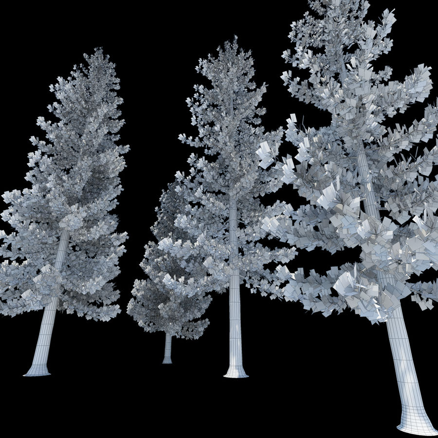 Pine Trees royalty-free 3d model - Preview no. 5