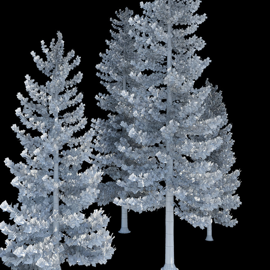Pine Trees royalty-free 3d model - Preview no. 7