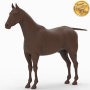 häst 3d model