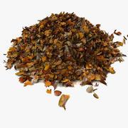 Pile Of Dry Dead Leaves 3d model