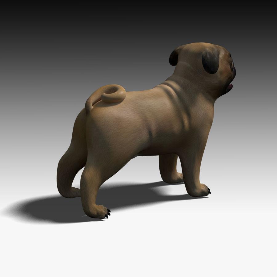 Pug Dog 3D Model $49 -  obj  fbx  ma - Free3D