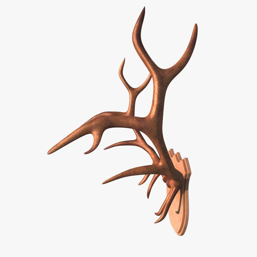 Deer Antlers royalty-free 3d model - Preview no. 3