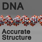 ADN estilo 1 modelo 3d