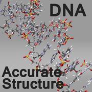 ADN estilo 2 modelo 3d