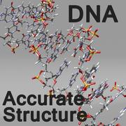 DNA Style 2 3d model