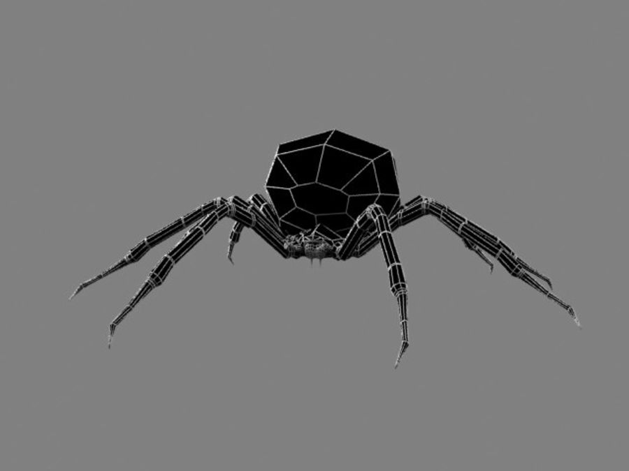 Shamrock Spider royalty-free 3d model - Preview no. 1